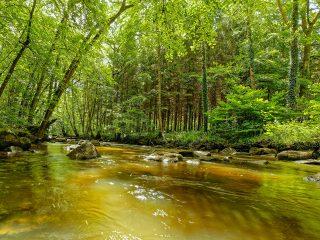 site_roche-d-oetre_orne_normandie_riviere