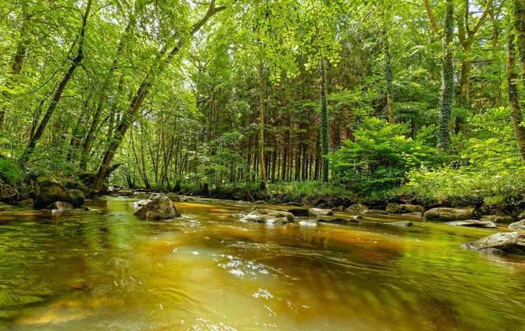 Rivière du site de la Roche d'Oëtre