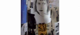 Exposition Merles Blancs – ARTerritoire