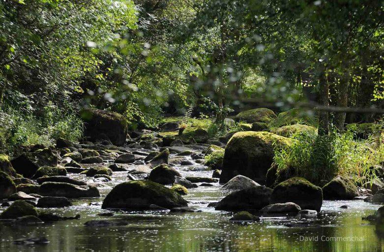 La rivière Rouvre boule de granite