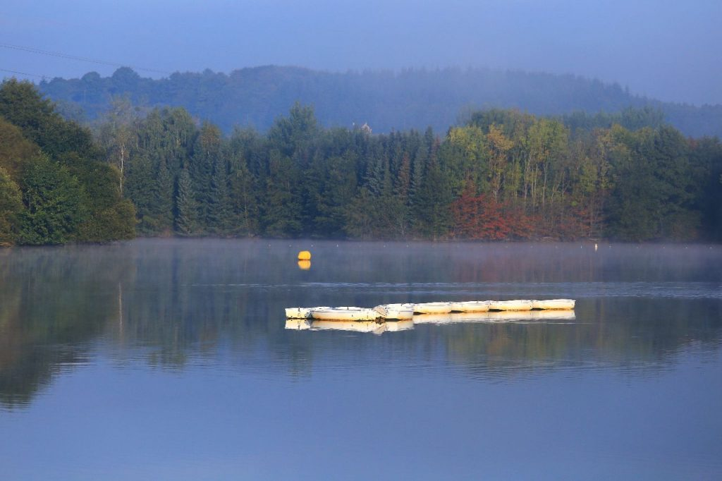 Le lac de la Ferté-Macé
