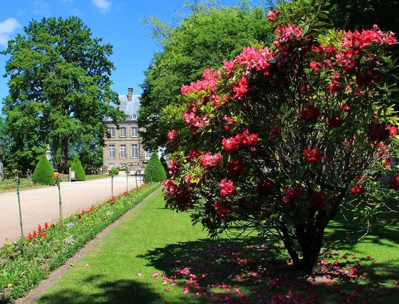 Allée fleurie du château de Flers