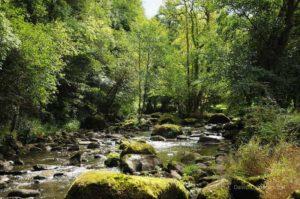 Boules de granite dans la rivière La Rouvre