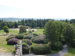 rhododendrons-mont-de-cerisy-flers-agglo