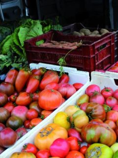 marche-athis-tomates