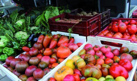 Tomates, maraicher sur le marché d'Athis-de-l'Orne