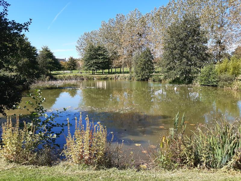 Plan d'eau de Bellou en Houlme