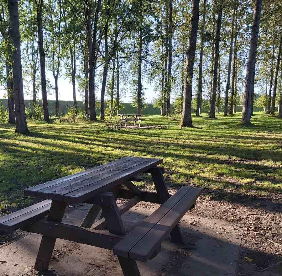 table de pique-nique près du lac de la Ferté