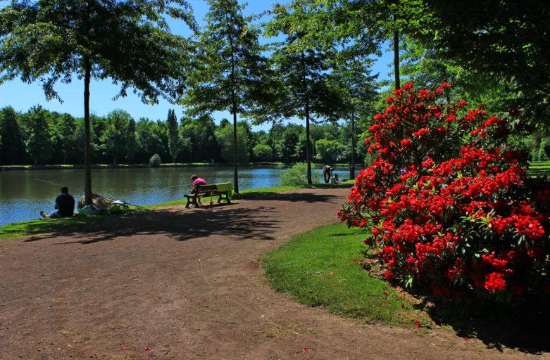 Pêche à l'étang du parc du château de Flers