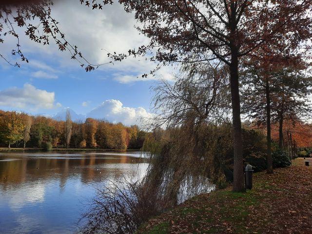 Parc de Flers à l'automne et son étang