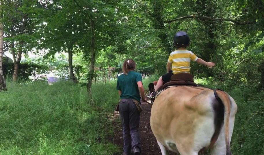 Balade à dos de vache